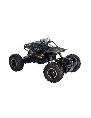 1/16 4WD RC Car toy Model